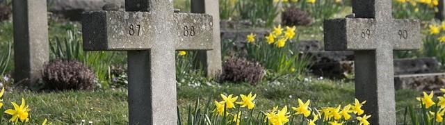 cemetery-300076_640